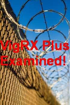 VigRX Plus Size Enhancer Review