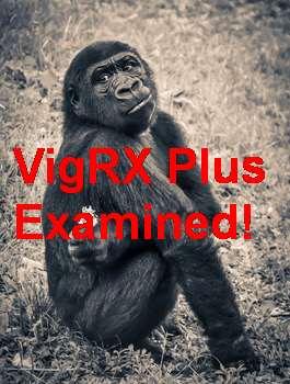 Where To Buy VigRX Plus In Hungary