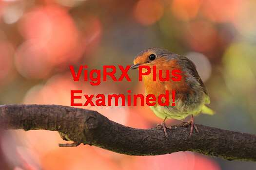 VigRX Plus Enlargement Exercises