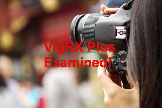 VigRX Plus Nederland