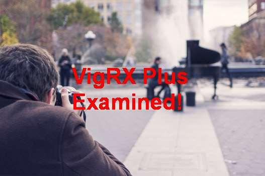 Harga VigRX Plus Original